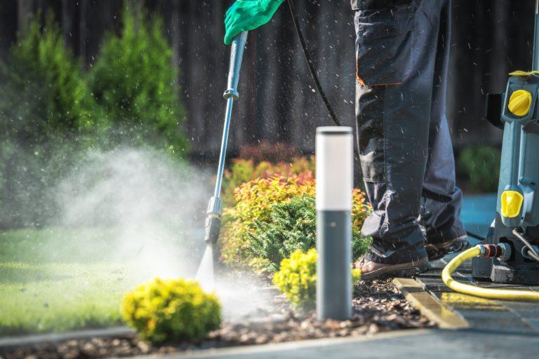 backyard garden cleaning NLJEW6H 768x512 1